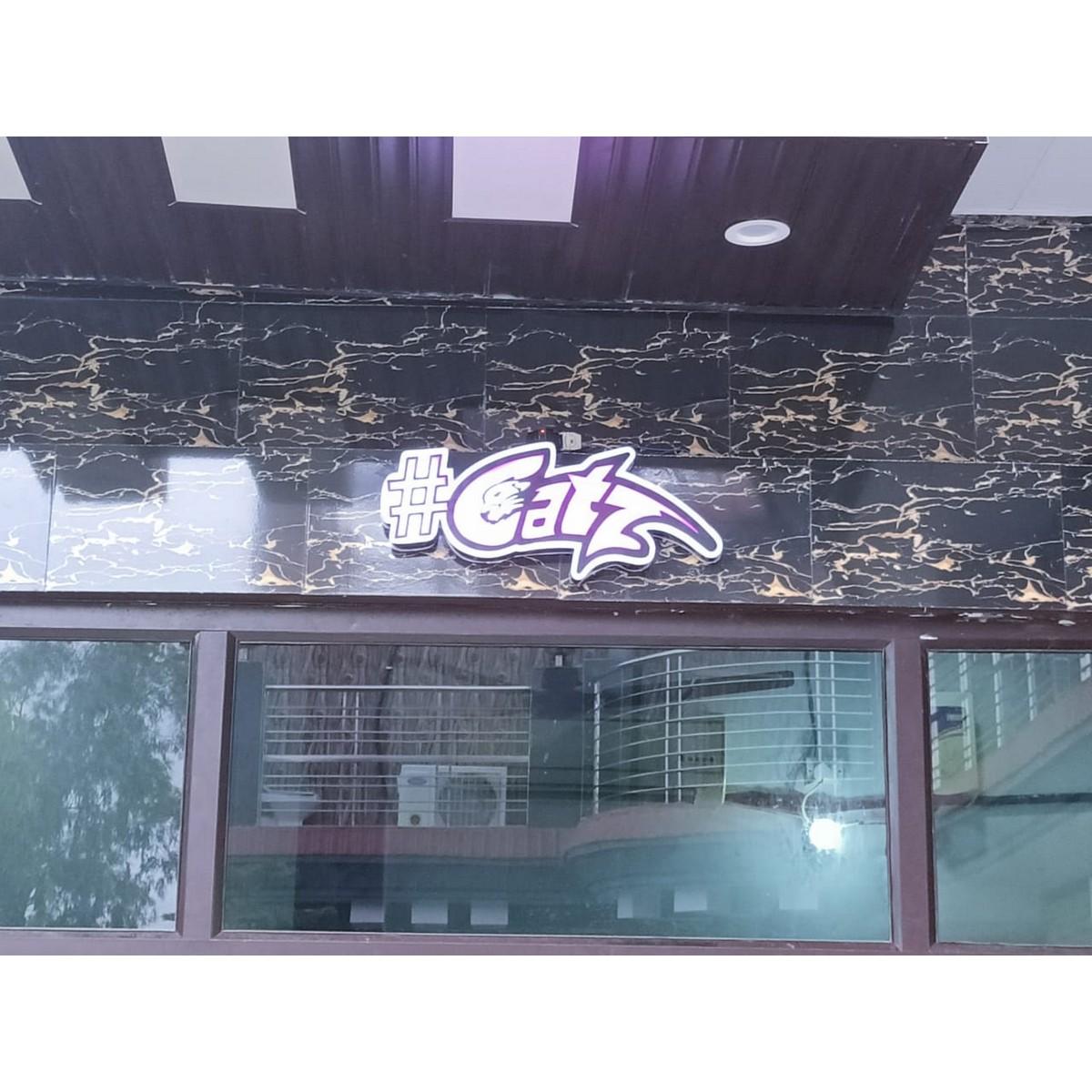 Catz LED Logo  Customizable  LED Logo  Customizable 3